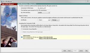 Picture 3 SSL VPN Interface
